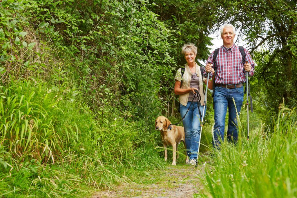 How to Plan a Successful Outing for Adults with Alzheimer's